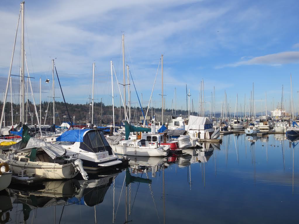 Budd-Bay-marina